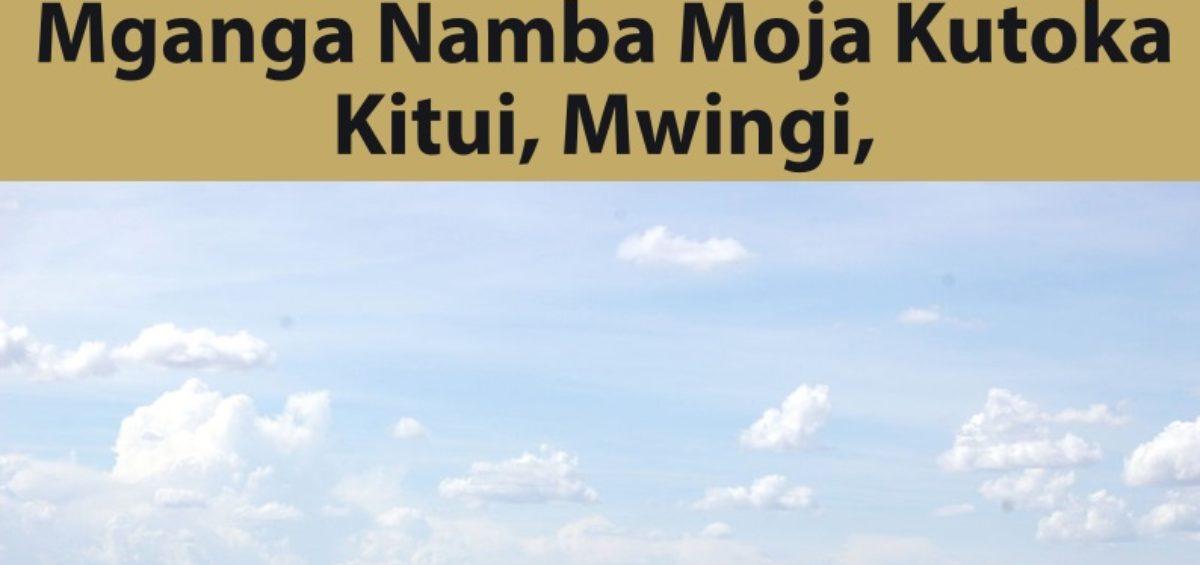 Mganga Namba Moja Kutoka Kitui, Mwingi, Makueni, Machakos, Mombasa na Tanga