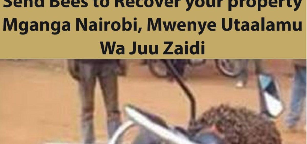 Professor Dr. Musa Sends Bees to Recover your property Mganga Nairobi, Mwenye Utaalamu Wa Juu Zaidi