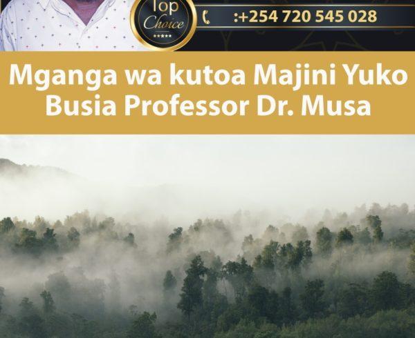 Mganga wa kutoa Majini Yuko Busia Professor Dr. Musa